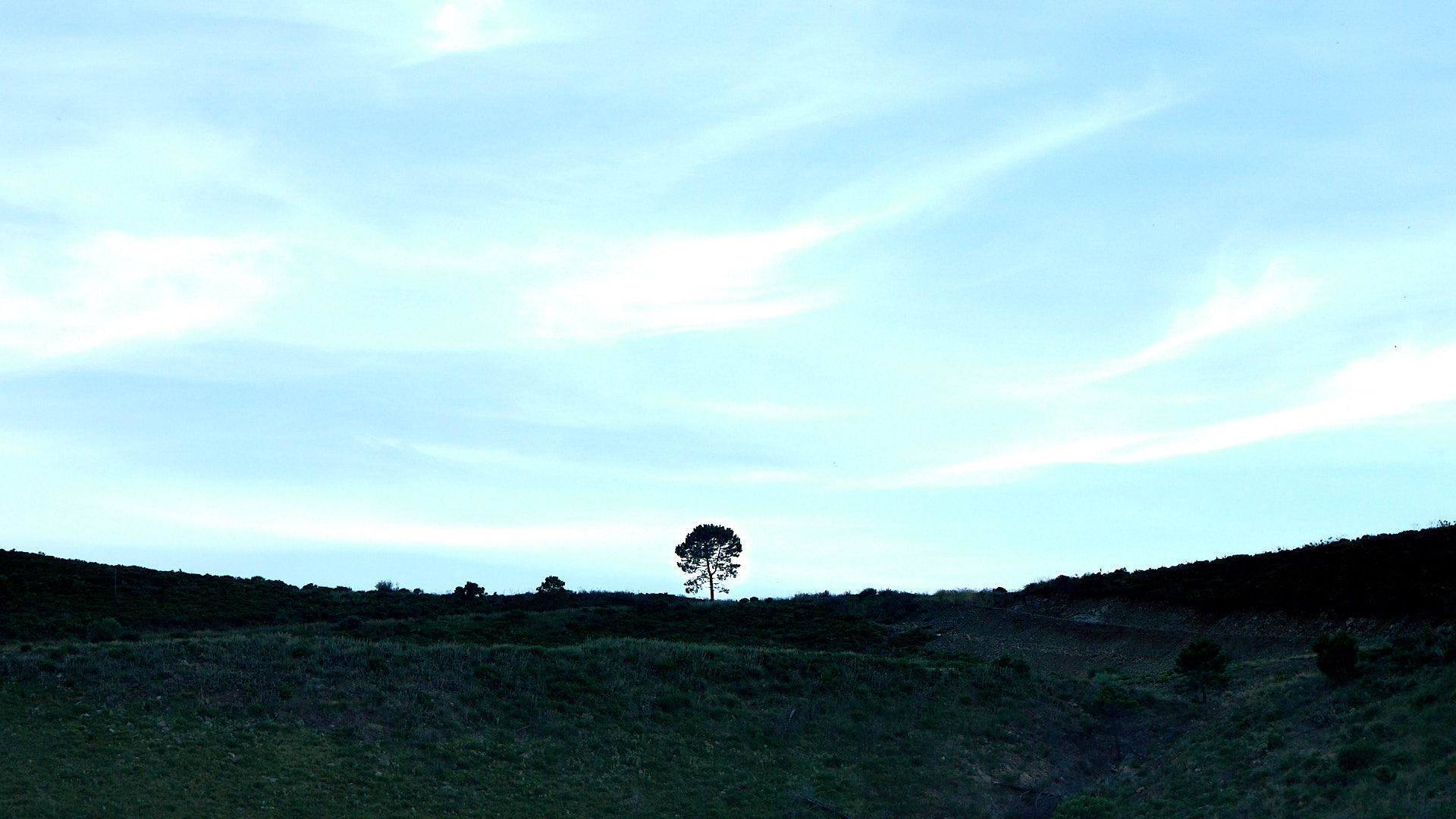 Andalucian Hills